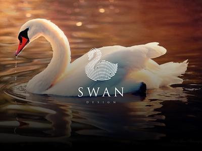 Swan Line Art vector illustration typography icon branding design graphic design swan line art swan logo