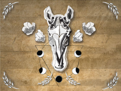 Illustrated Horse Skull