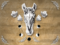 Illustrated Horse Skull