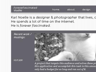 New karlnoelle.com website homepage gray minimal sans serif cat kitten kitteh white