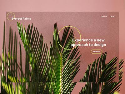 Design concept - Essentialist Nature webdesign mockup ui