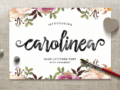Carolinea Hand Lettered Typeface hand drawn premium font brush font typeface font face font