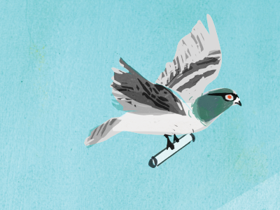 Pigeon with a Purpose pigeon carrier pigeon fly purpose texture printmaking paint digital goggles