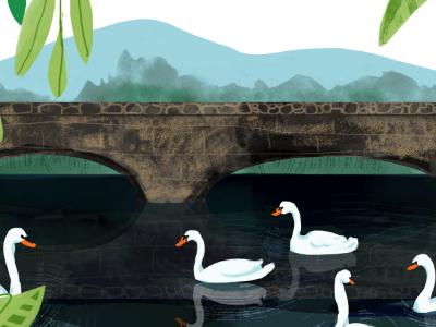 Pond of Swans illustration texture birds nature north carolina montreat pond swan
