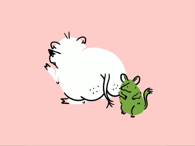 I like pig butts and I cannot lie 🐖💨 tail animation meme chinchilla butt pig procreate funny lol sketch doodle illo design illustration