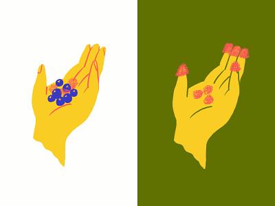 Rasp-y-doodles illustration doodle procreate ipad illo sketch hands fruit blueberries raspberries