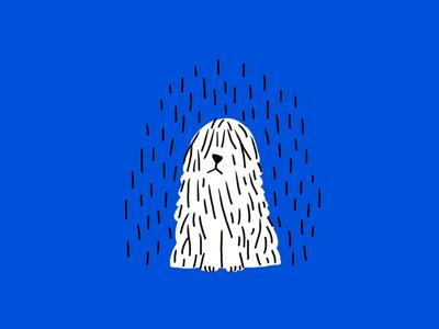 rain! 🌧👃🌧💦🐩💦