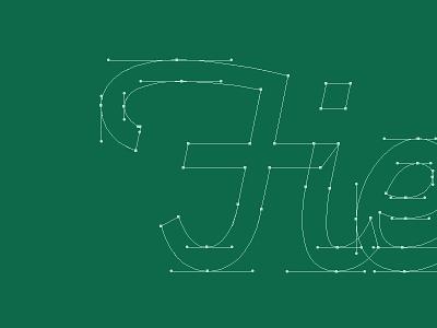 Fieldwork Progress logotype logo fieldwork bezier typography script hand lettering focus lab