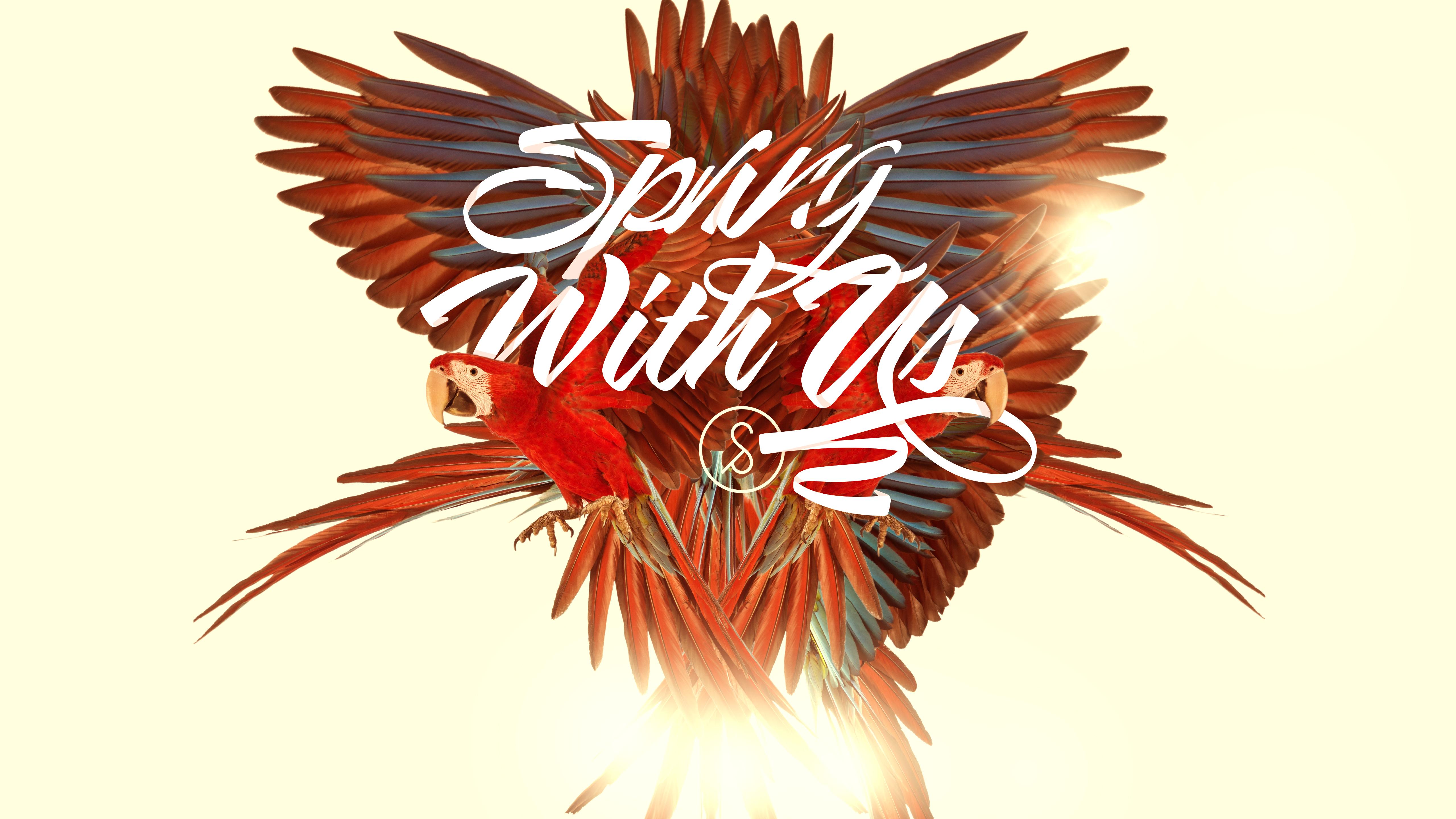 Springwithuswallpaper5k