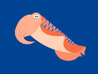 Cuttlefish minimal sea see fish cuttlefish illustration flat design