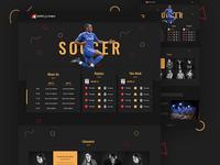 Soccer Website Redesign Concept