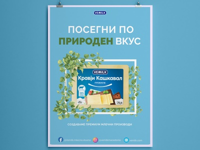 Vemilk Poster Design Student Project dairy cheese marketing poster design vector illustration typography design