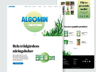 Algomin | Web design graphic design design web