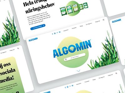 Algomin |Web design web graphic design design