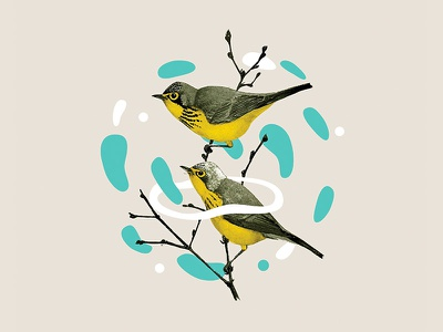 Sing A New Song vector blobs branch birds collage