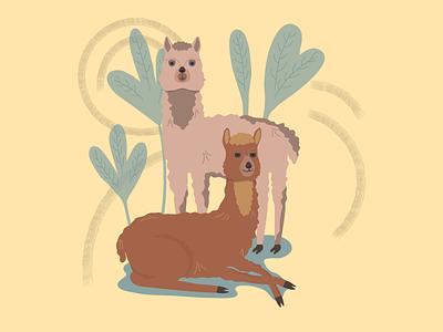 Happy alpacas alpaca animals animal vectors vectorart vector illustration vector art vector digitalart design digital painting digital illustration digital art digital illustrator illustrations illustration art illustration