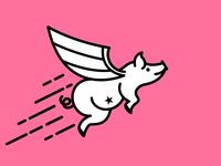 Flying Bacon