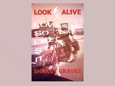 Shakey Graves poster shakey graves music print poster