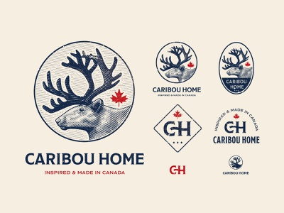 Caribou Home logotype illustration engrave vintage handmade craft badge icon canada deer caribou identity pack branding logo