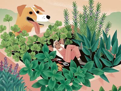 Revista Salvaje Minihuerto editorial editorial illustration illustration