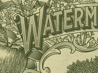 WaterM WIP