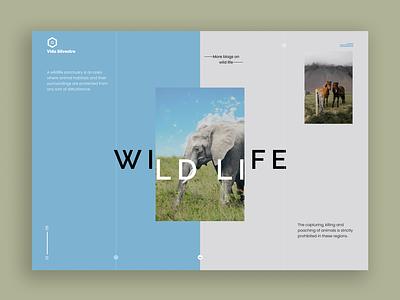 Vida Selvestre god nature elephants horses animals wildlife typography vector illustration design ux ui landingpage figma desktop website branding logo