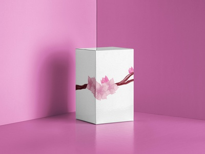 Sakura packaging branding digitalart poster design illustration graphicsdesign illustrator