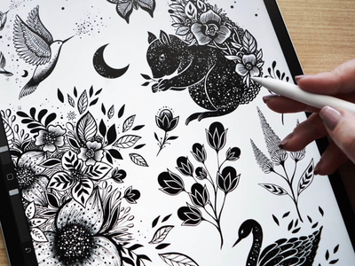 Procreate ink doodles. nature ink apple pencil apple bird squirrel swan graphic design logo floral flowers black and white illustration drawing ipad pro ipad digital drawing digital procreate