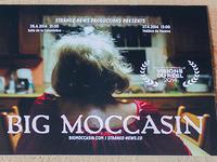 Big Moccassin Postcard
