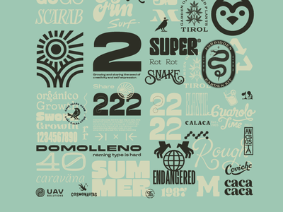 Type collage 2 fonts lettering design type typography
