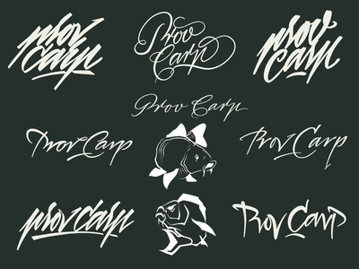 Carp lettering freehand script kaligrafia calligraphy logotype logo