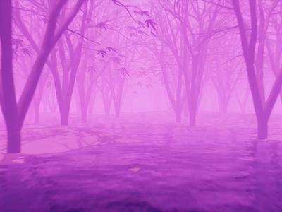 Lofi Forest loop animation loop vibes design hazy dreamy color forest video gif animated animation render blender3d blender