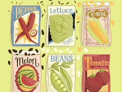 Vintage Inspired Seed Packet Illustration vintage vegetable fruit seeds typography lettering art handlettered food illustration illustration lettering packaging
