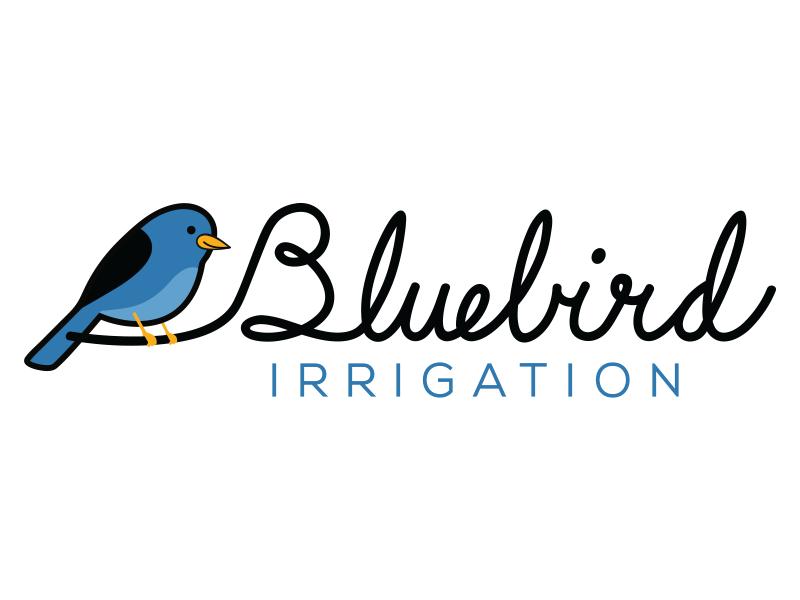 Bluebird logo blue logotype text written hand font cursive script logo bird