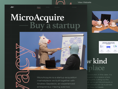 MicroAcquire Case Study unicorn photography case study website design web