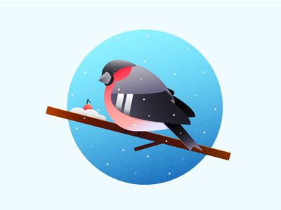 Bullfinch zajno circle flat vector 2d illustration cold snow rowan winter bullfinch bird
