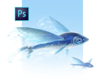 Children's Book Flying Fish Illustration air social project water child story flying fish character light fly magic adobe photoshop printing children concept zajno fairytale drawing digital painting illustration book fish