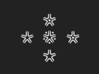 Star Flowers - exploration