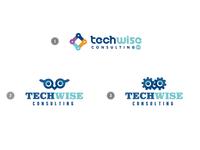 Techwise - NEED LOGO ADVICE