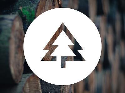 Self branding in progress illustration logo pine timber tree branding