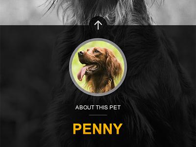 Pet Profile - App Screenshot invite pet adoption preview dog gallery profile pet ux android ios app mobile