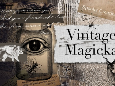 Vintage Magicka motion graphics 3d animation ux vector ui logo icon illustrator graphic design design illustration branding