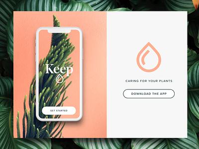 Keep App plant nature plants clean modern app design logo identity branding brand ui ux