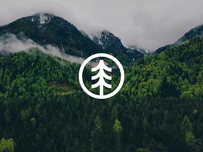 The Tree Project visual identity design branding logo