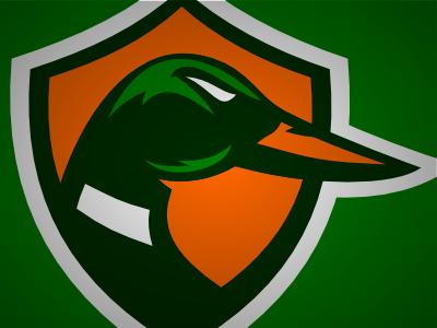 Ducks ducks hockey anaheim shield logo vector