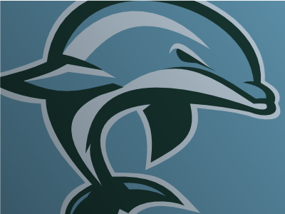 Dolphins dribbble presentation