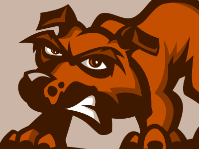 New muckdogs dribbble