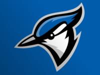 Blue Jays rebound