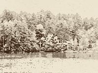 Lake Cross Sketch