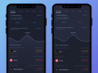 Bitcoin Wallet  - Dark